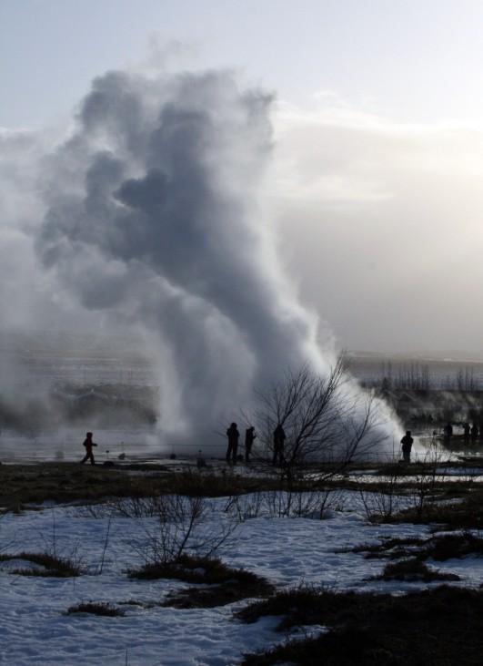 WinterlichesIsland - Frostiges Abenteuer in der Wildnis
