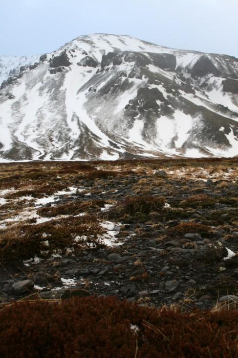 WinterlichesIsland - Frostiges Abenteuer in der verschneitenWil