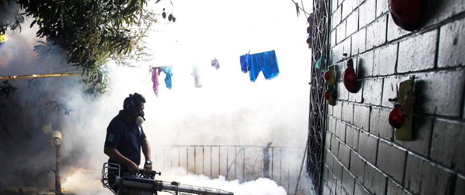 Mücken-Bekämpfung in Lateinamerika