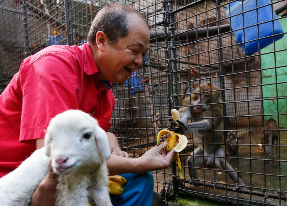 Malabon Zoo welcomes Chinese New Year the Year of the Red Monkey
