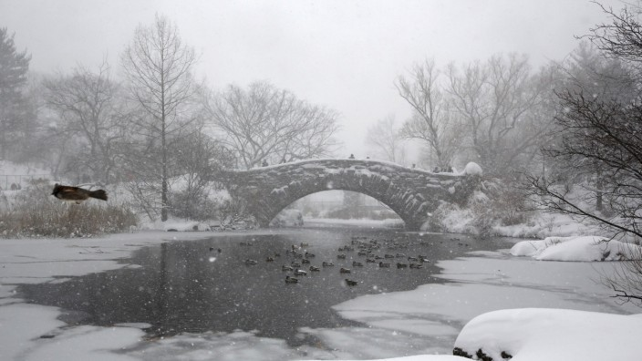 A bird flies by a pond during a snowstorm at Central Park in the Manhattan borough of New York