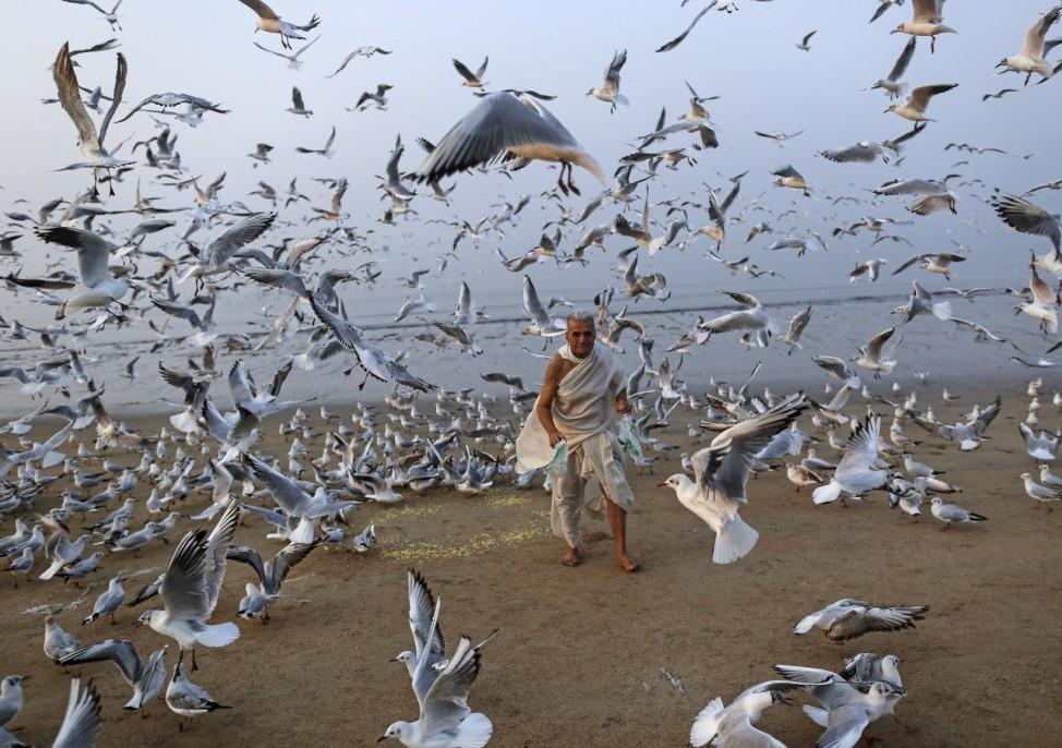 A man feeds seagulls on a beach along the Arabian Sea in Mumbai