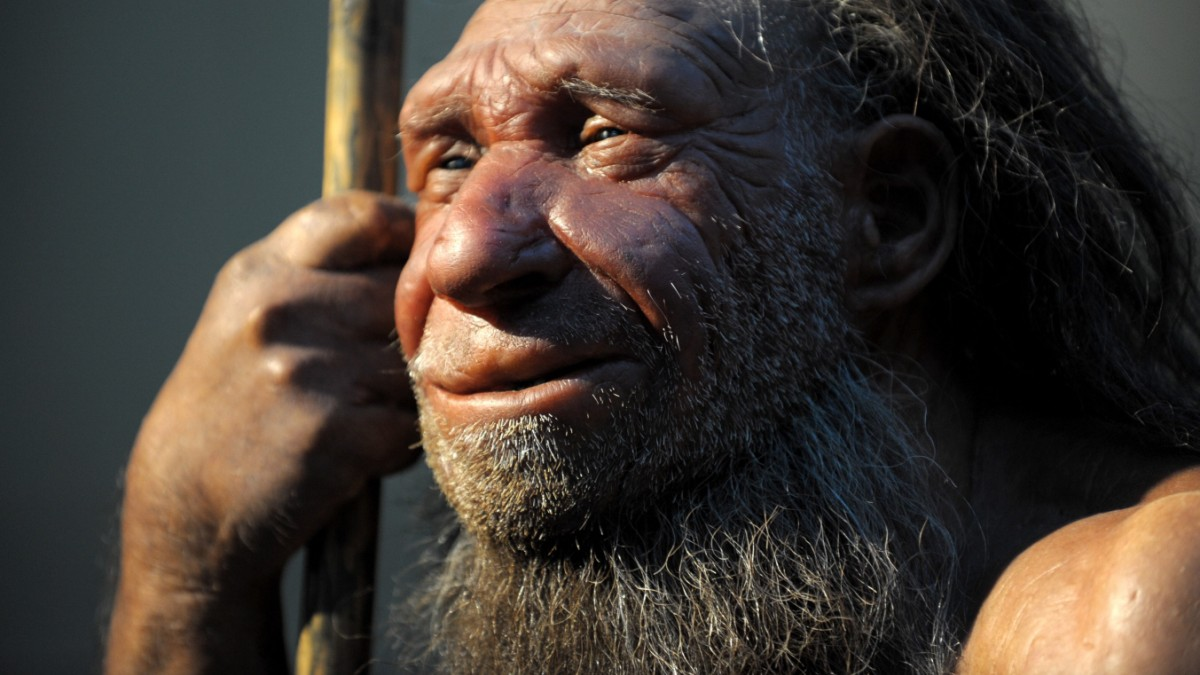 Coronavirus: Neandertaler-Gen soll anfälliger für Covid-19 machen