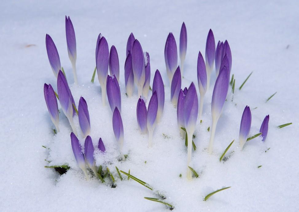 Meteorologischer Frühling beginnt winterlich