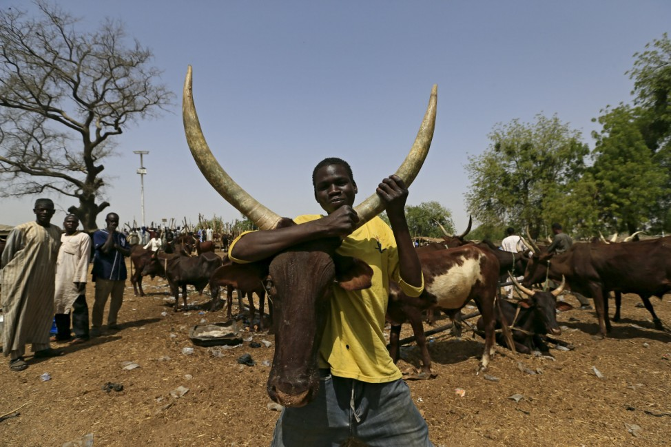 The Wider Image: Herders suffer in fight against Boko Haram