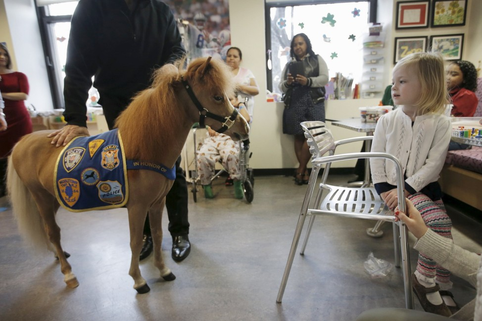 Handler Jorge Garcia-Bengochea holds Honor, a miniature therapy horse from Gentle Carousel Miniature Therapy Horses, as they visit with patients at the Kravis Children's Hospital at Mount Sinai in New York