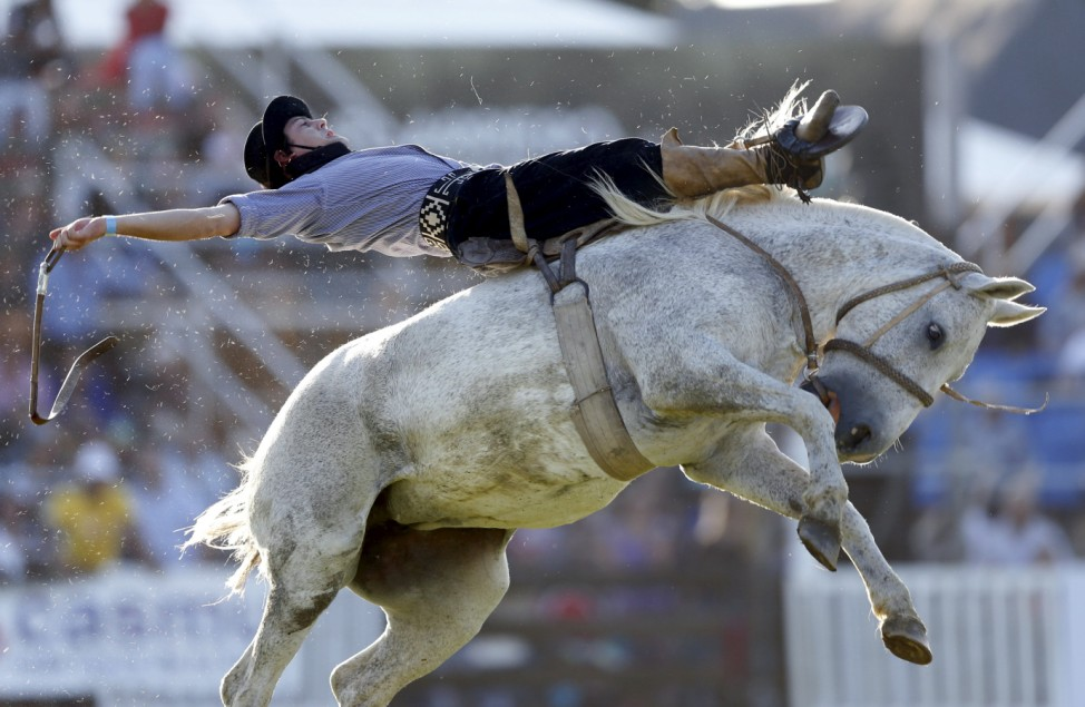 A gaucho rides an unbroken or untamed horse during Creole week celebrations in Montevideo