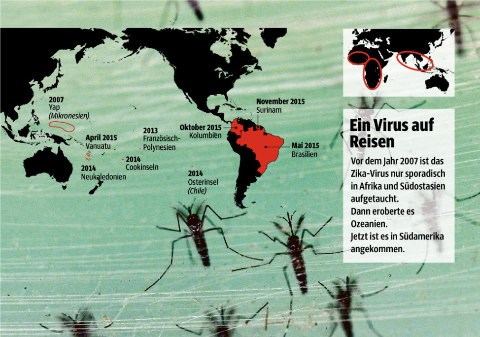 Virus; Grafik Zika