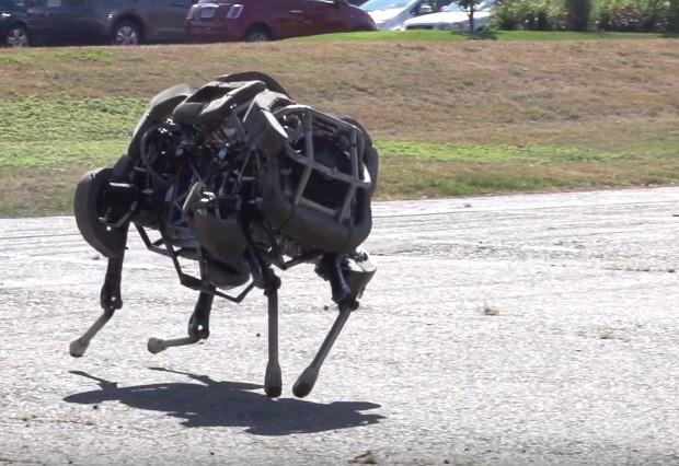Wildcat Cheetah Roboter Boston Dynamics