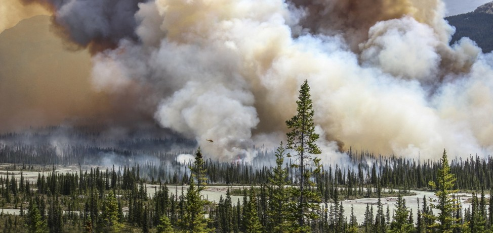 PRIZEWINNER: Environmental Photographer of the Year 2016Sara Lindström, Wildfire, 2015 / Banff