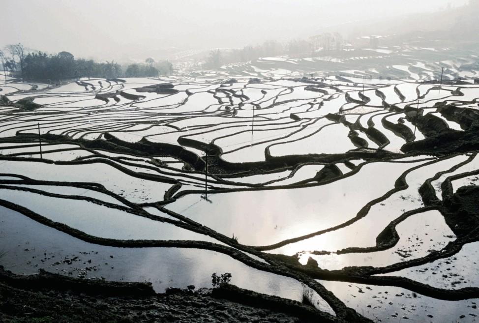 Reisanbau, China, Yunnan / Foto; 10_Michaud_S.356-57_China