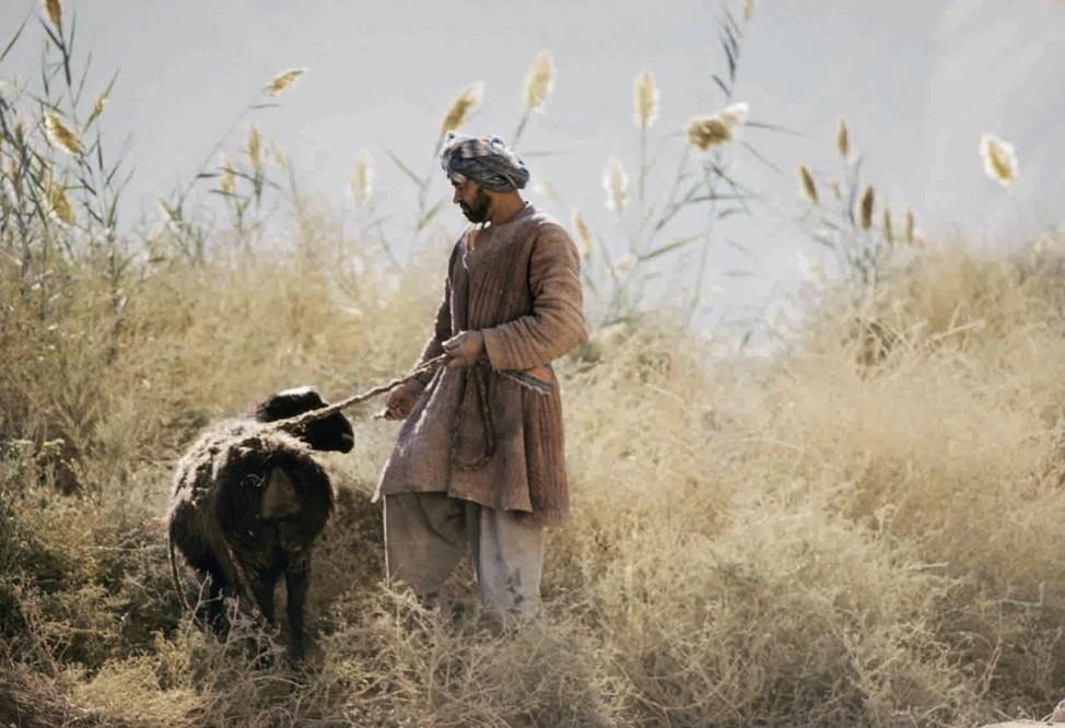 Afghanistan, Bauer mit Schaf / Foto; 03_Michaud_S.96_Afghanistan