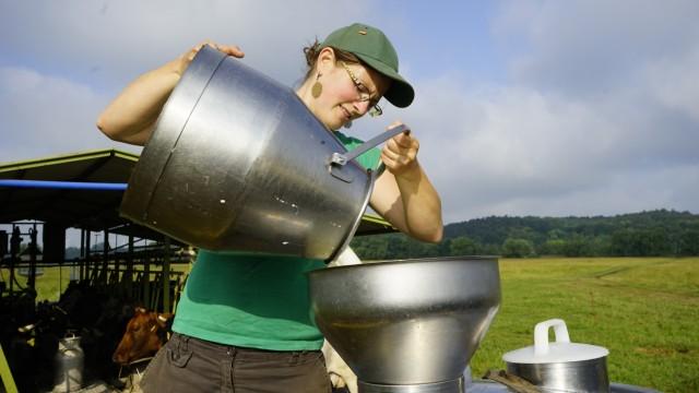 Stolzenhagen Milch Kühe Landwirtschaft,Stolzenhagen Milch Kühe Landwirtschaft Anja Hradetzky