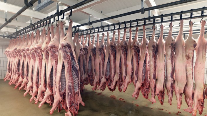 Sides of pork in cold store of a slaughterhouse property released PUBLICATIONxINxGERxSUIxAUTxHUNxONL