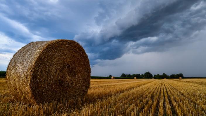 Deutschland wird heißer, nasser und stürmischer