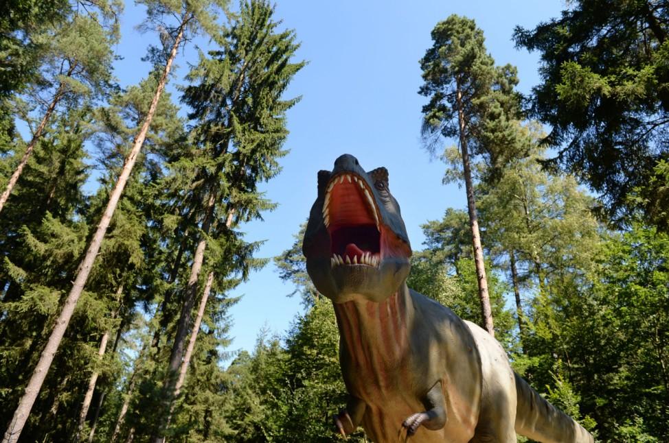 Dinosaurier-Freiluftmuseum Altmühltal