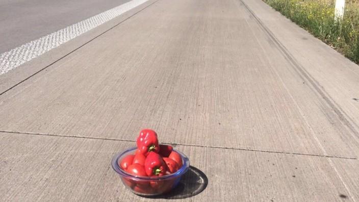 Tomaten Autobahn