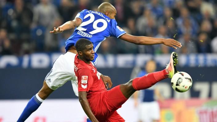 Fussball 1 BL Saison 2016 2017 Spieltag 4 FC Schalke 04 1 FC Köln 21 09 2016 Veltinsarena Gel