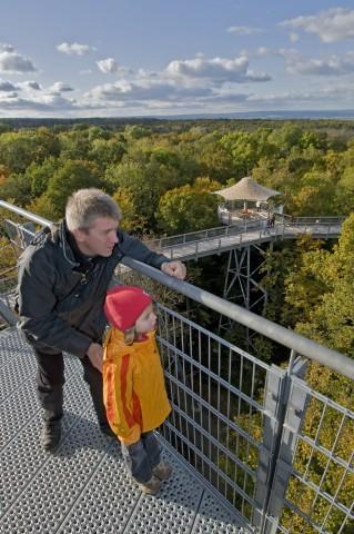 Nationalpark Hainich; Herbst in Deutschland