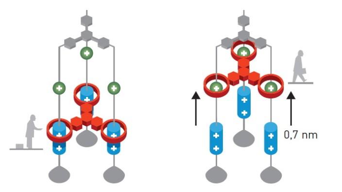 Spitzenforschung: Modell eines Nano-Aufzugs. llustration: Johan Jarnestad/The Royal Swedish Academy of Sciences
