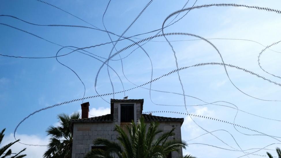 AIRLINES - Vogelspuren in der Luft