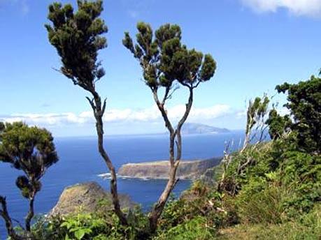 Die schönsten Inseln der Welt: Azoren, dpa