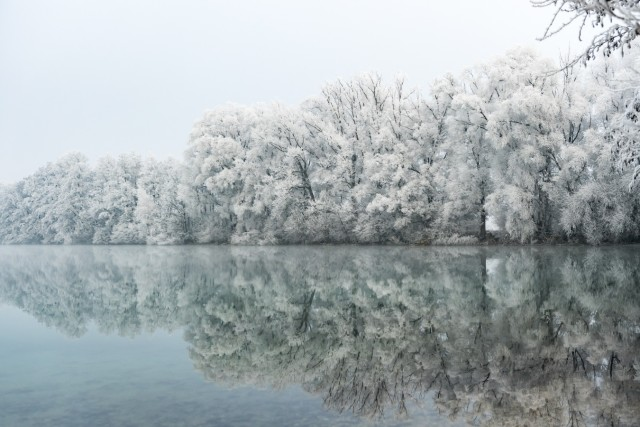 Raureif am Mühlsee, 2016
