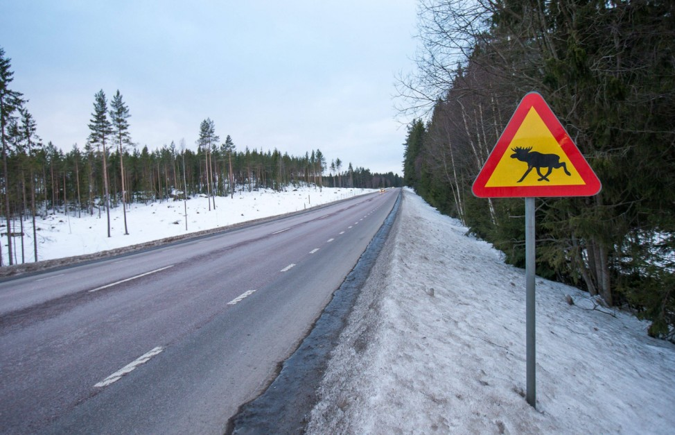 THEMENBILD ein Verkehrsschild mit einem Elch auf einer Landstrasse nahe Falun Dalarna Schweden