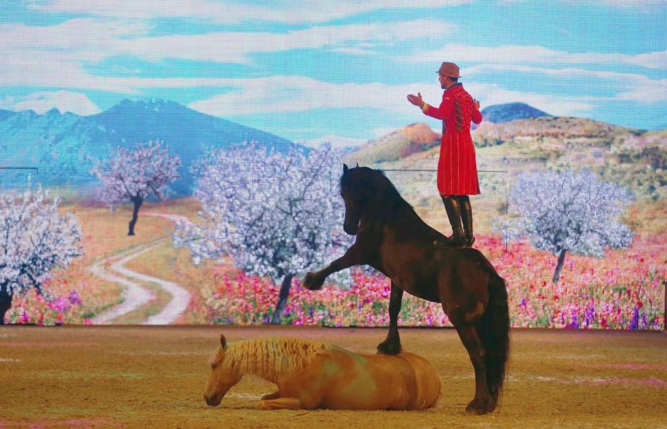 Fototermin zur Pferdemesse Equitana