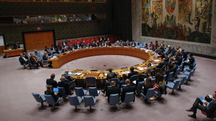 UN Security Council discusses Syria