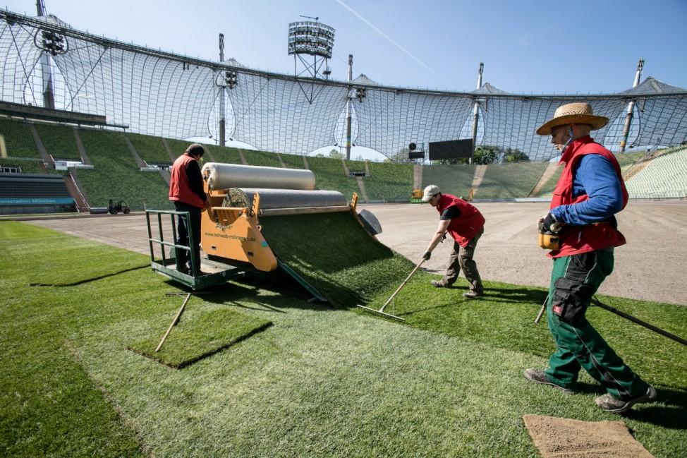 Verlegung eines neuen Rasens im Olympiastadion