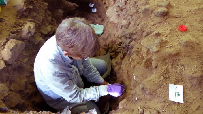 Urmenschen-Erbgut in Sand nachgewiesen
