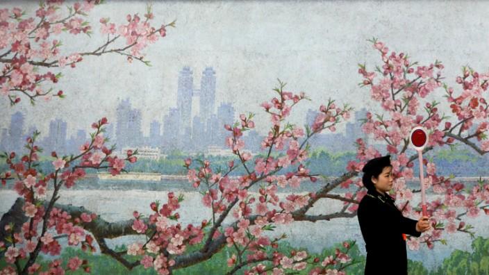 Cherry Blossom Kirschblüte Metrostation