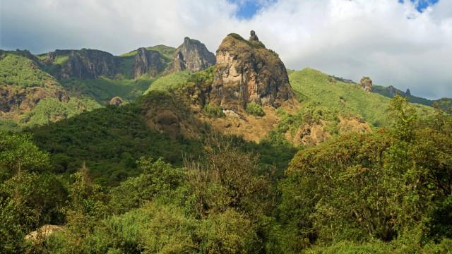 Gushuralle Peak Aethiopien Oromiya Bale Mountains Nationalpark Harenna Forest Gushuralle Peak E