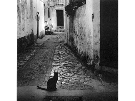 Bilder von Capri, Prestel Verlag