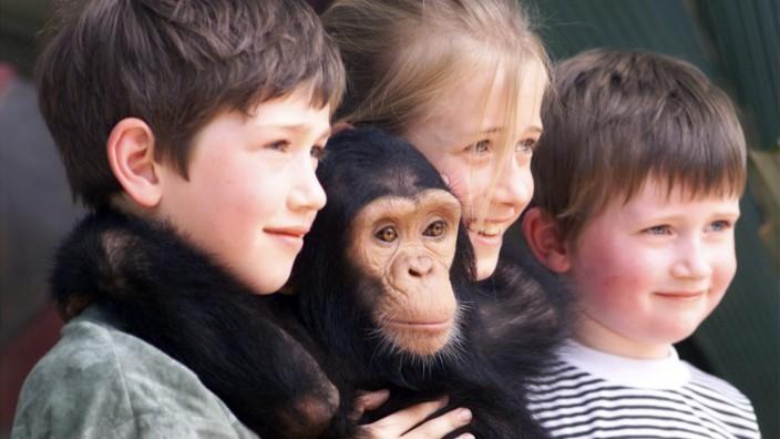 Kinder mit einem jungen Schimpansen