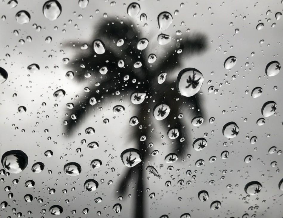 Regen in Florida