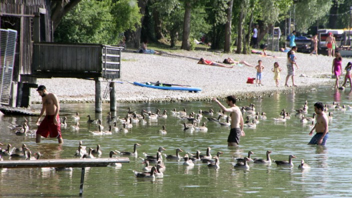 Badespaß am Ammersee