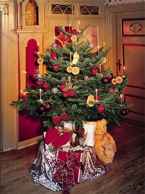 Weihnachtsbaum; dpa