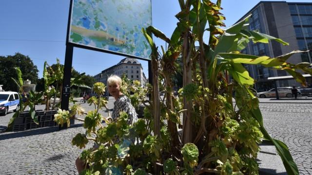 Kunst: Am Lenbachplatz lässt Susi Gelb Bananen und Sukkulenten sprießen. Die Kunsttafel oben zeigt Makroaufnahmen ihrer Farbreaktionsversuche.