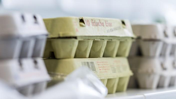 Skandal um belastete Eier - Veterinäruntersuchungsamt