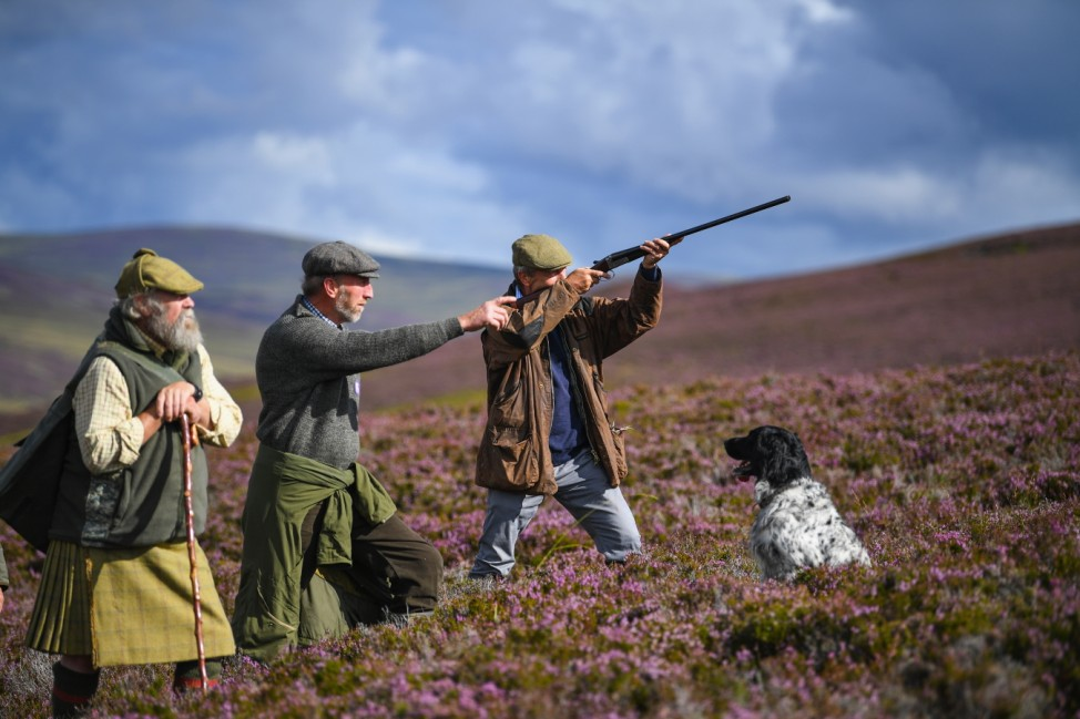The Glorious 12th Marks The Official Start Of Grouse Shooting Season