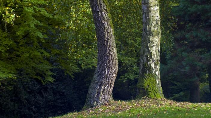 Stadtentwicklung: Der Knoops Park in Bremen. Eine Fläche am Rand des Parks soll bebaut werden; dagegen kämpft eine Bürgerinitiative.