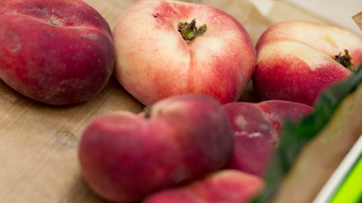 pfirsich erntezeit
