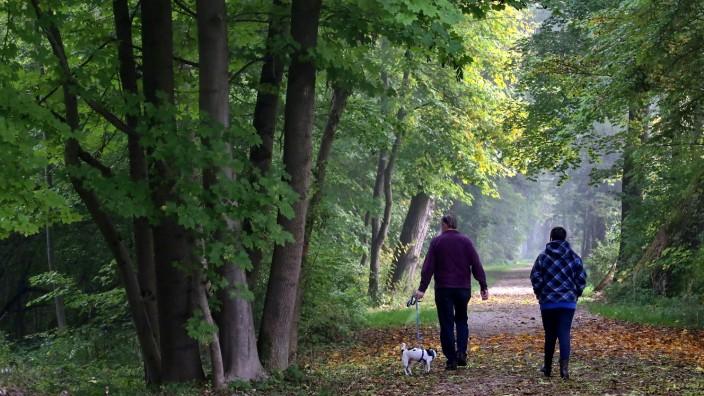 Auf Hunde aufpassen: Bis Freitag, 10. November, müssen Freisinger Hundebesitzer noch wachsam sein, da in dieser Zeit Rattenköder an der Moosach verteilt werden.