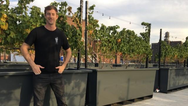 Weinbau in New York: Der Chef: Devin Shomaker.