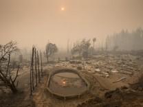 Klimakolumne: Apokalypse oder Blumenbeet