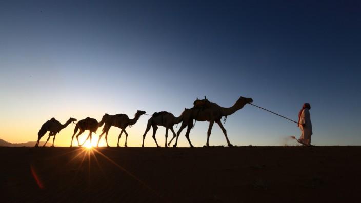 TOPSHOT-SAUDI-DESERT-CAMELS