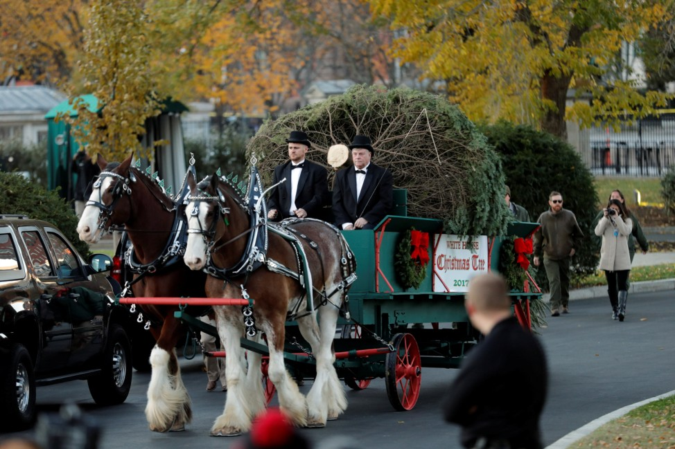 The official White House Christmas Tree, a Wisconsin-grown tree provided by the Chapman family of Silent Night Evergreens, arrives at the White House for a welcome ceremony hosted by First Lady Melania Trump and her son Barron in Washington D.C