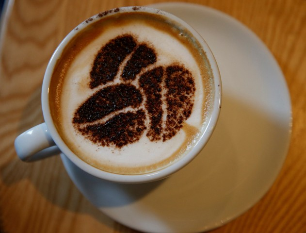 FILE PHOTO: A Cappuccino stands on a table at a branch of Costa coffee in Manchester